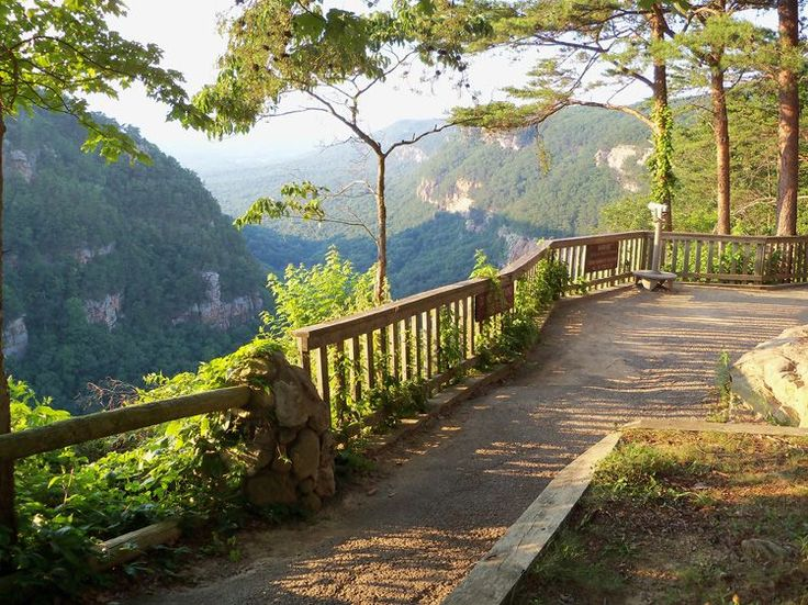 Cloudland Canyon State Park, GA near Chattanooga  Lookout Mountain -- has great hiking and walk-in camp sites that aren't far from parking