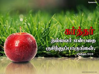Download HD Christmas Bible Verse Greetings Card & Wallpapers Free: Tamil Bible Verse Desktop Wallpapers Download