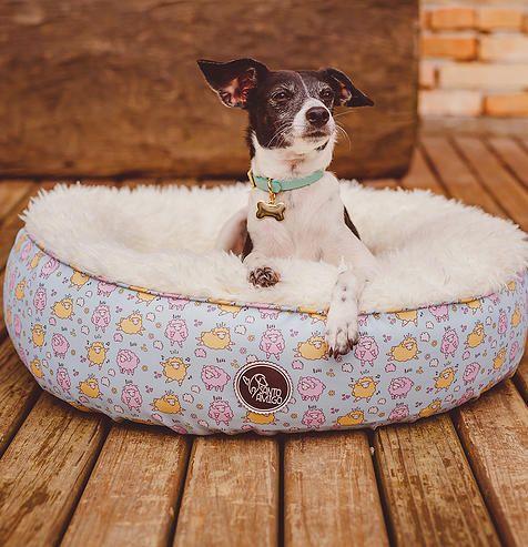 camas diferenciadas para cachorros com estilo | Santo Amigo | Camas para cachorros