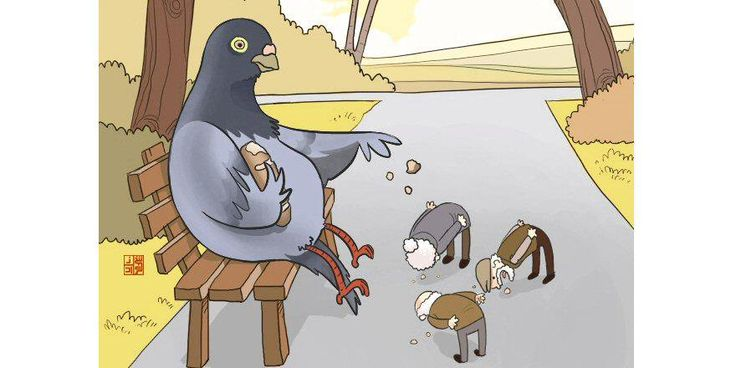 A retired pigeon feeds humans.