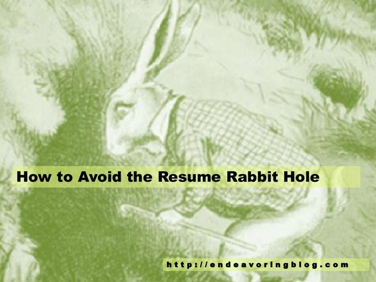 How to Avoid the Resume Rabbit Hole Top 10 Tips Endeavoring - resume rabbit