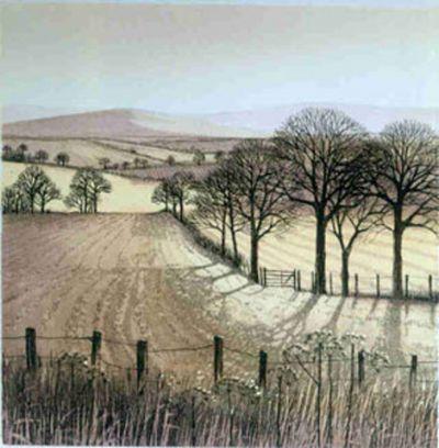 Winter Shadows Etching by Kathleen Caddick