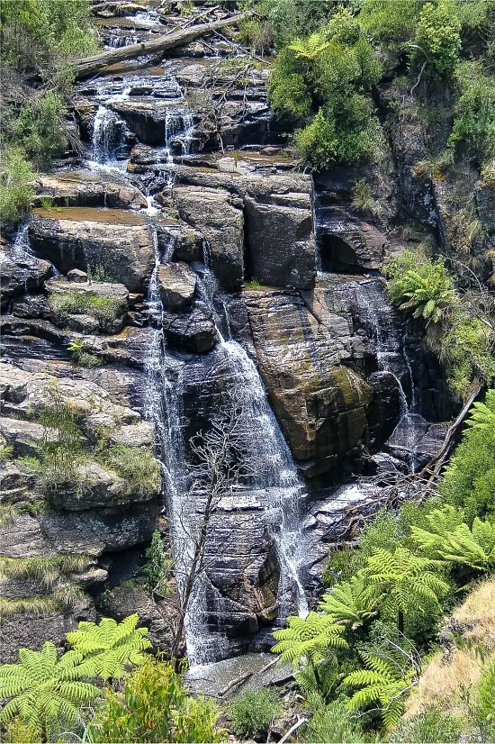 Victoria, Australia: Masons Falls, Kinglake National Park.