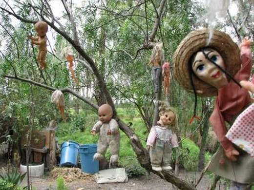 """Island of the Dolls, Mexico - a hermit, Don Julian, lived on this island where he was tormented by the ghost of a girl who'd drowned. To appease her he hung the dolls from the trees for her to play with. In 2001 Julian's body was found by his nephew; he'd drowned in the same canal as the girl. Since then, tourists have claimed to hear the dolls whispering and see them moving on their own. When Syfy's """"Destination Truth"""" visited they experienced apparitions, paranoia and disembodied voices."""