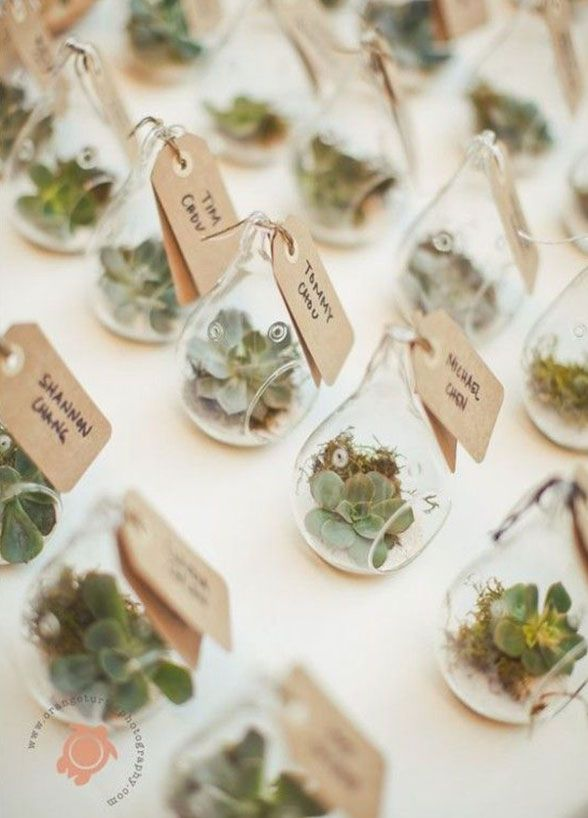 11 Eco-Chic Wedding Favors: Small glass vessels for succulents and air plants are adorable and so on-trend. Click for more ideas: http://www.colincowieweddings.com/inspiration-and-details/11-fresh-wedding-favors-for-the-eco-chic-couple