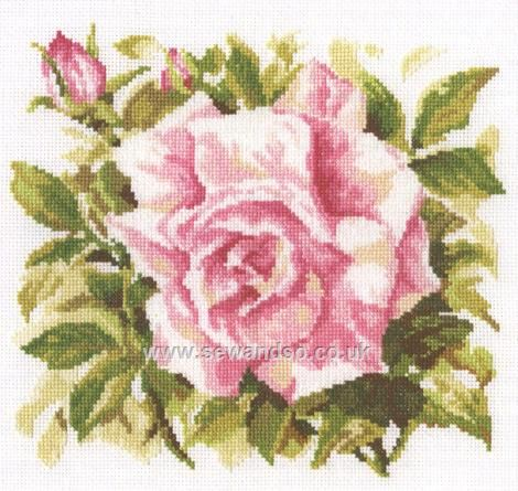 Buy+Wild+Rose+Cross+Stitch+Kit+Online+at+www.sewandso.co.uk