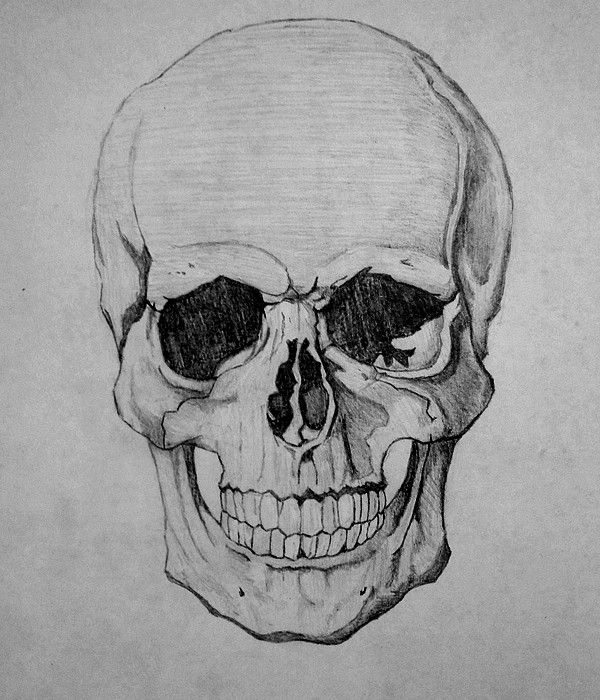 25 best ideas about cool skull drawings on pinterest