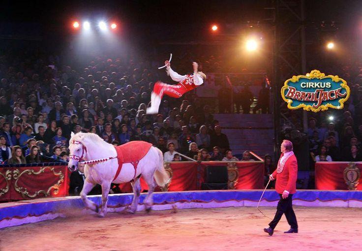 Circus Brazil Jack