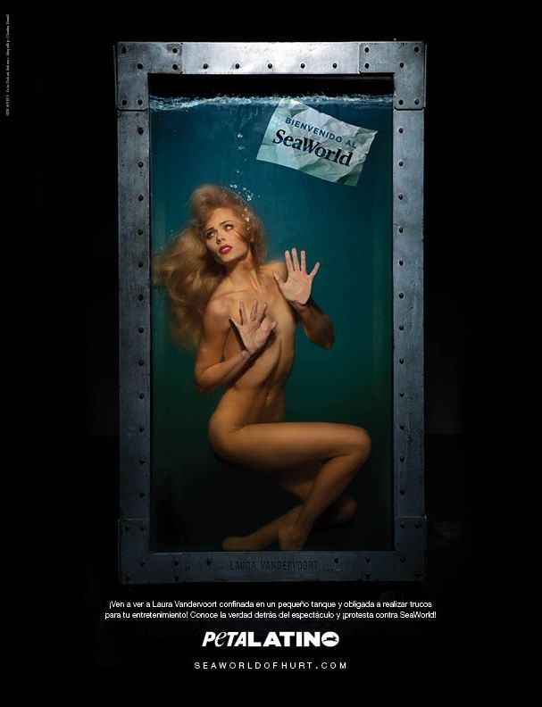 One Difference Between SeaWorld And Ringling Bros.   PETA