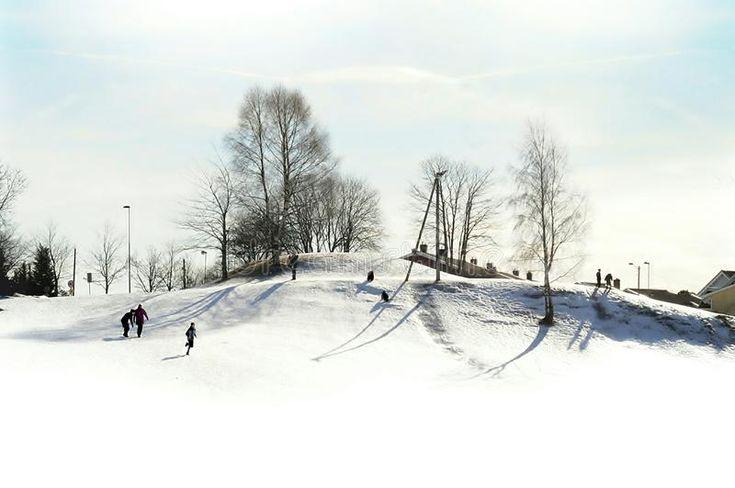 Download Full of joy winter stock image. Image of kids, people - 105912179