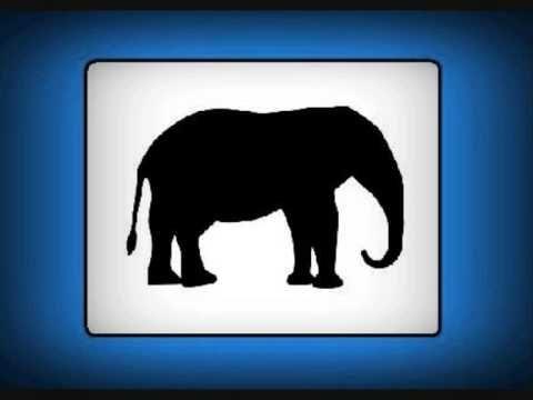 geluid - olifant
