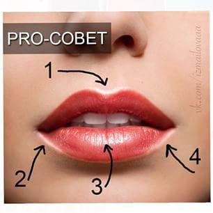 """для того, чтобы сделать губы объёмнее, используйте карандаш светлого оттенка (белый, кремовый, бежевый, молочно-белый). Важно: не обводите губы полностью, а """"подсветите"""" те точки губ, которые и без макияжа дают естественные блики. Это: 1. Выемка над верхней губой 2. Боковая часть нижней губы 3. Центр нижней губы 4. Боковая часть нижней губы"""