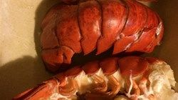 This basic recipe for steamed lobster tails is the best way to ensure perfect lobster every time.