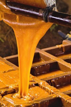 Raspadura, Panela o Dulce de Caña -- La caña de azucar es un vinculo perfecto de sabor y dulzura entre los diferentes paises latinoamericanos.