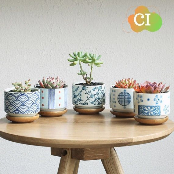 Pin On Bamboo Planters