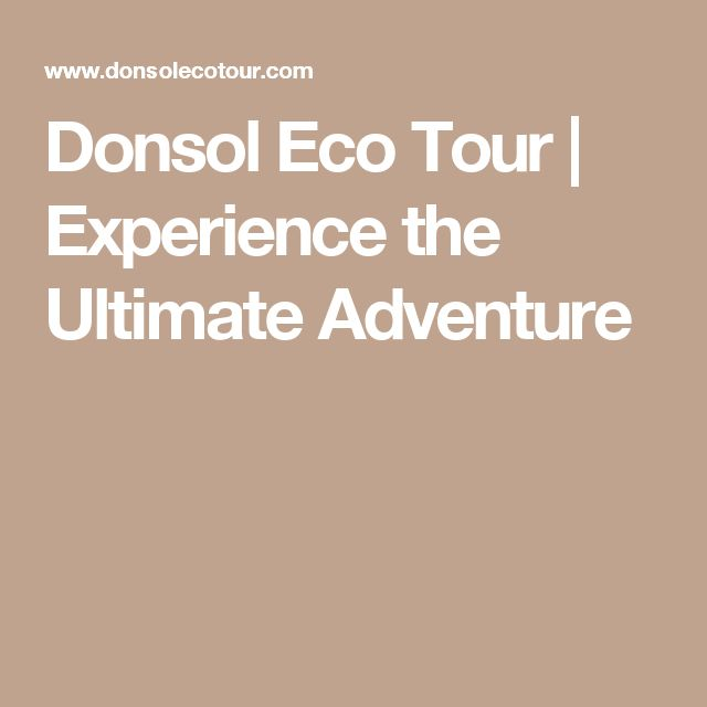 Donsol Eco Tour   Experience the Ultimate Adventure