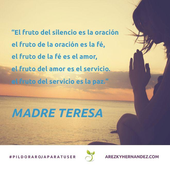 El fruto del silencio es la oracón, el fruto de la oración es la fé, el fruto de la fé es el amor, el fruto del amor es el servcio, el fruto del servicio es la paz. #pildorarojaparatuser