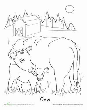 cute calf coloring pages | 1000+ images about Cow lessons on Pinterest | The Cow, Cow ...