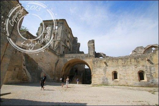 Abbaye-Montmajour-Arles (35)