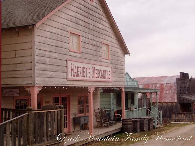 Bakersville Pioneer Village and Seed Store- on the way to MeMe and Larry's- near Laura Ingalls Wilder home