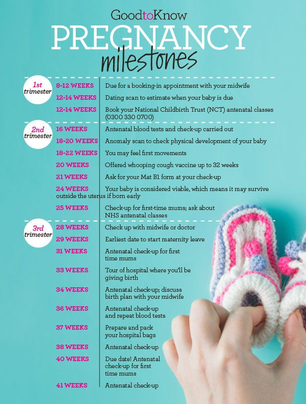 Pregnancy calendar: Your pregnancy timeline - goodtoknow