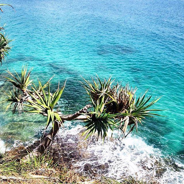 Trampoline Springs Sunshine Coast: The 190 Best Sunshine Coast Images On Pinterest