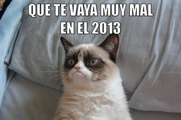 gato_grunon_que_te_vaya_muy_mal_610