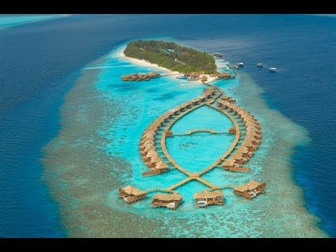 Lily Beach Resort & Spa - 5 star Maldives