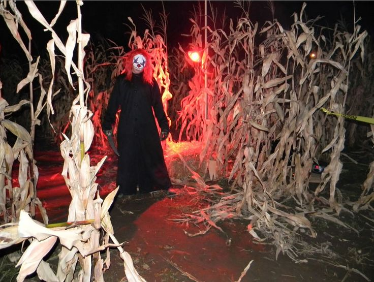 Take the halloween corn maze to a creepy new level with these haunted corn mazes near Atlanta. Enter the corn if you dare!