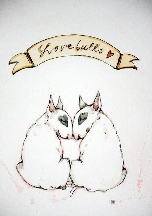 English bull terrier art - Can anyone name me the artist?! So cute!