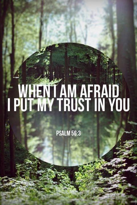 psalm 56 3 4 when i am afraid i put my trust in you in