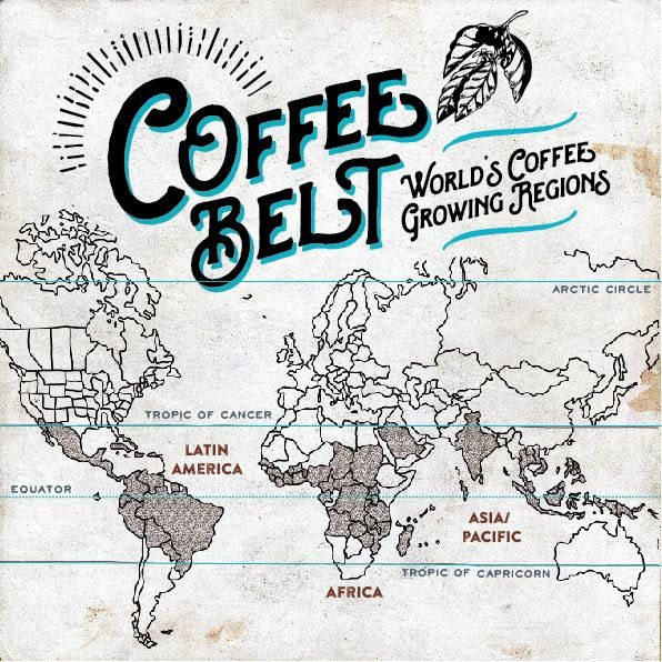 The 18 best djournal coffee guide images on pinterest coffee guide like protons and neutrons or polar bears with jetpacks indonesia and coffee are two things gumiabroncs Choice Image