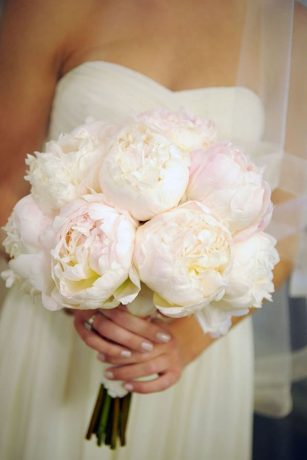 i really don't think there is anything more beautiful than a bouquet of peonies