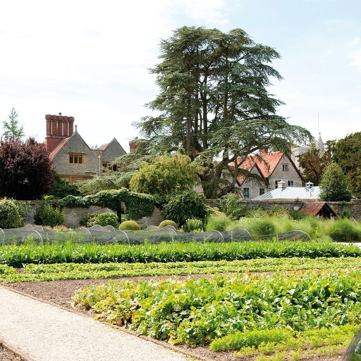 Le Manoir aux Quat'Saisons—Oxfordshire, United Kingdom. #Jetsetter