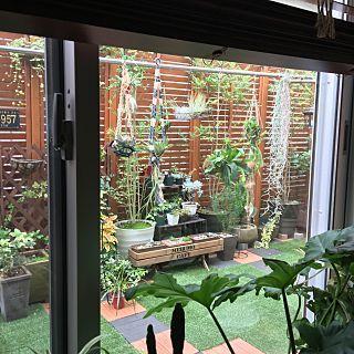 庭DIY×人工芝パネルのインテリア実例 | RoomClip (ルームクリップ) Entrance/ウッドパネル/ルーバーラティス/リトルガーデン/植物のある暮らし/