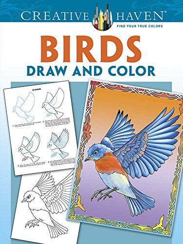 By Marty Noble Creative Haven Birds Draw And Color Coloring Books