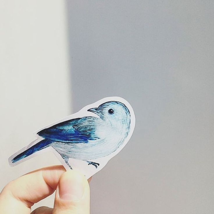 watercolor, sticker, blue bird, animal, cute