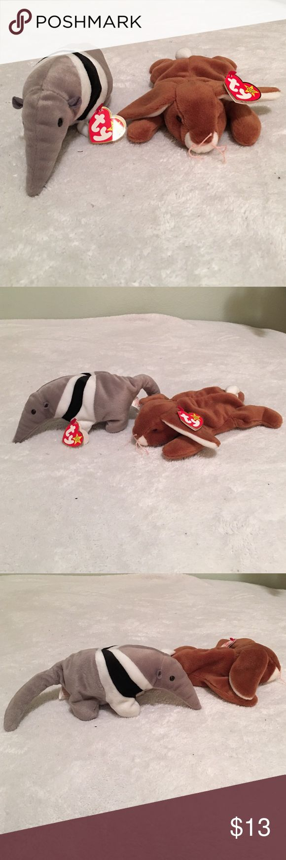 Beanie Babies! These adorable beanie babies (Ants and Ears) are looking for a new home! $5 each. Could also negotiate a price :) Beanie Babies Accessories
