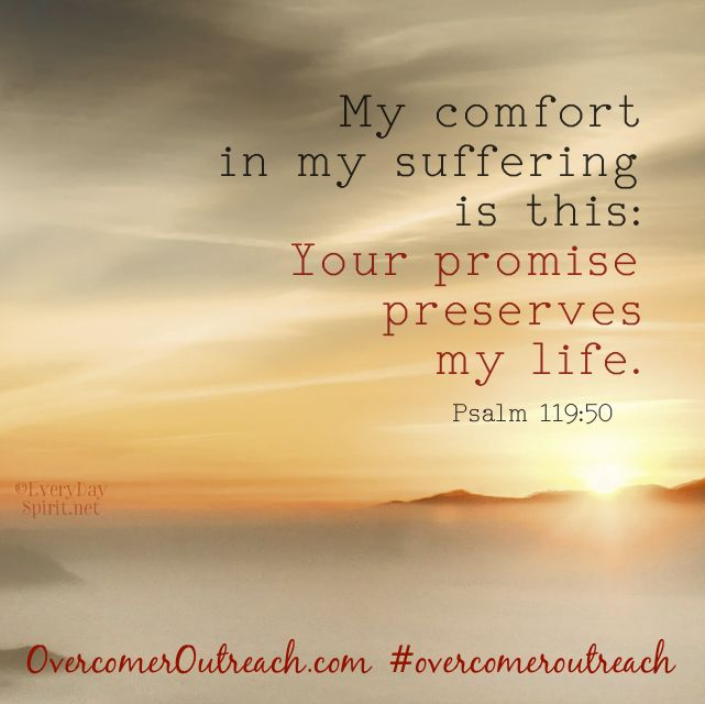 Thank you, Lord, for Your promises!