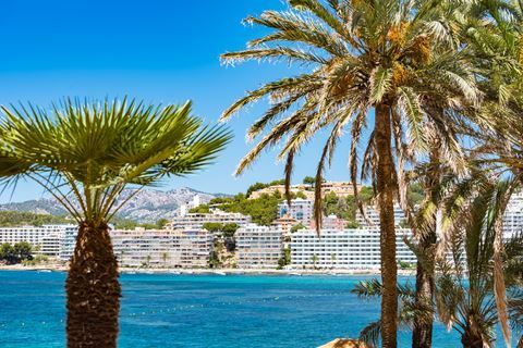 Fergus Style Cala Blanca  Description: Ligging: Het Fergus Style Cala Blanca ligt in Santa Ponsa en direct aan het privéstrand van Cala Blanca. Het stadscentrum vindt u op ca. 1 km afstand en op ca. 8 km afstand ligt het Western-waterpark en Aqualand. Het centrum van Palma de Mallorca bevindt zich op ca. 20 km. Faciliteiten: Het Fergus Style Cala Blanca beschikt over 175 luxe kamers die verdeeld zijn over twee gebouwen. Het 4-sterrenhotel heeft een chic en mediterraan uiterlijk. U vindt er…