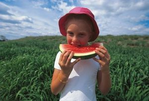 A Queensland youngster tucks into watermelon in Chinchilla - A Queensland youngster tucks into watermelon in Chinchilla © Tourism Queensland