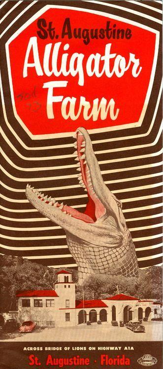 St. Augustine Alligator Farm c.1955 travel brochure. Vintage Florida ☮ re-pinned by http://www.wfpcc.com