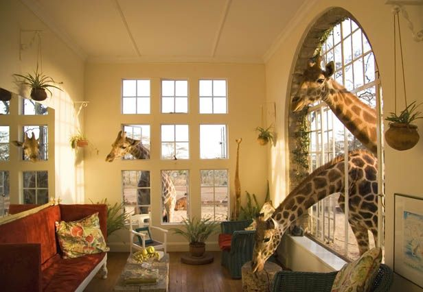 Giraffe Manor in Africa