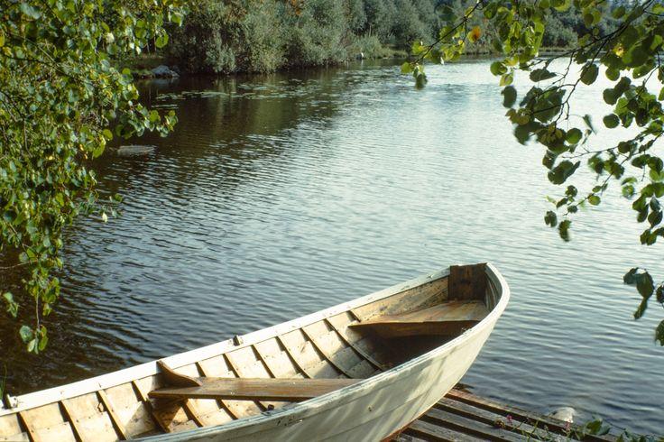 järvi | Vahvike