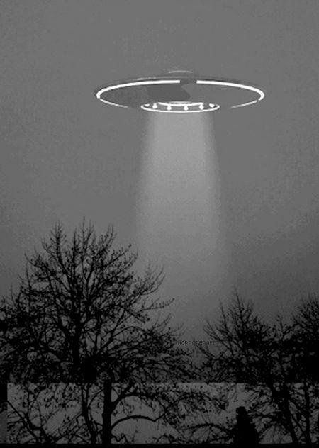 Aliens, ovnis, extraterrestres, naves espaciales, abducciones y marcianos son temas que en la actualidad aun representan un misterio, pues nadie tiene pruebas contundentes de su existencia o de su contacto con la tierra, al igual que tampoco se pueda probar que no existan. Uno de los temas de investigación más relevantes en el tema es la historia y significado de los círculos de cultivo lee aquí lo más relevante. #PinCCTecnología #Alien #Ovni