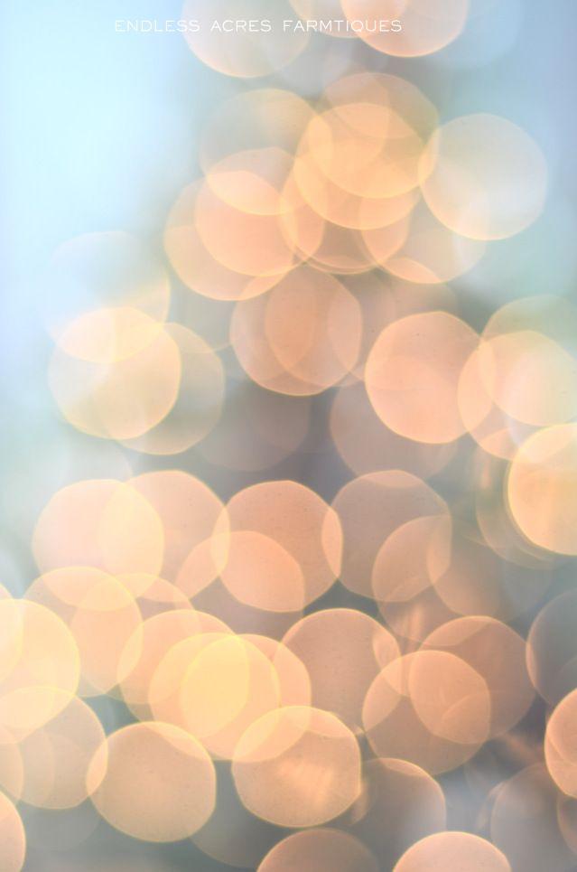 Christmas Lights <3