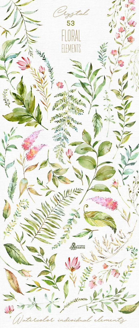 Crystal. 53 Individual Floral Elements. Watercolor clipart, leaves, leaf, greenery, forest, flowers, wild, wedding, bridal, green, png, diy