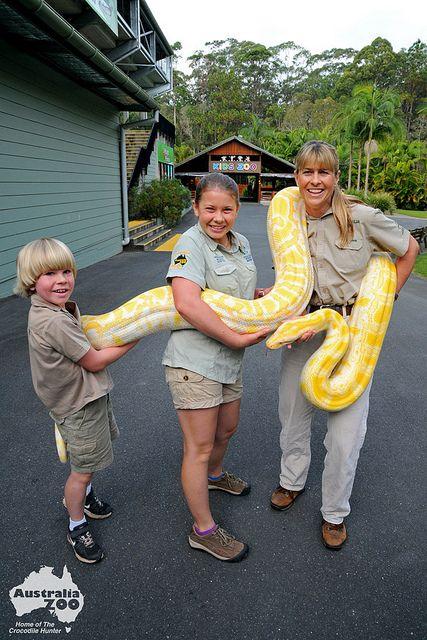 Robert, Bindi and Terri Irwin moving Alimah the albino Burmese Python at Australia Zoo, Beerah, Sunshine Coast.