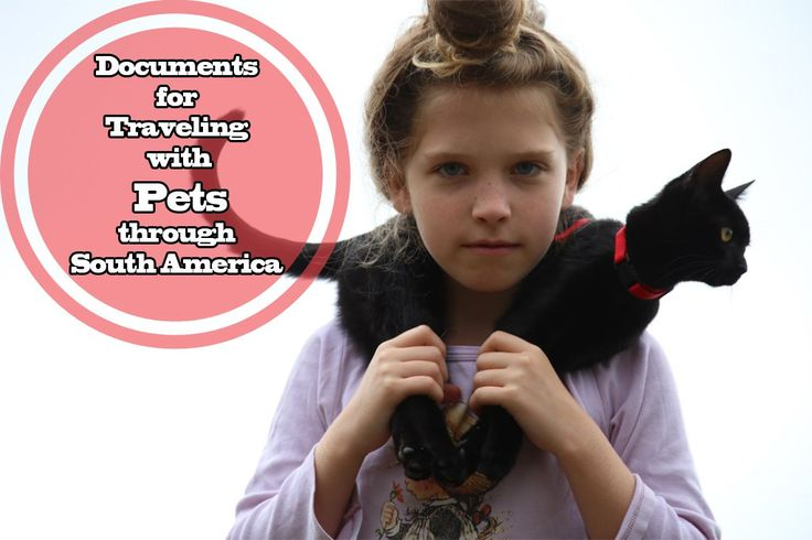 Documents for Traveling with Pets through South America