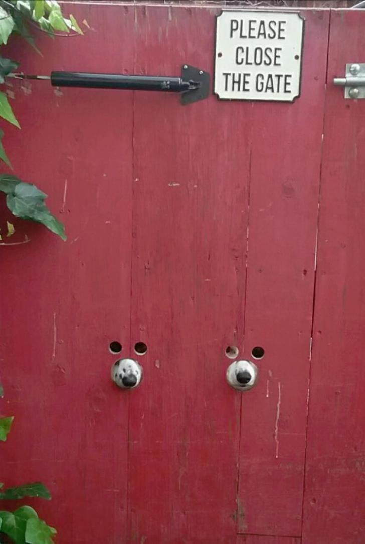 Dog-friendly holes